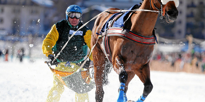 2016 White Turf St. Moritz – 21 February Results