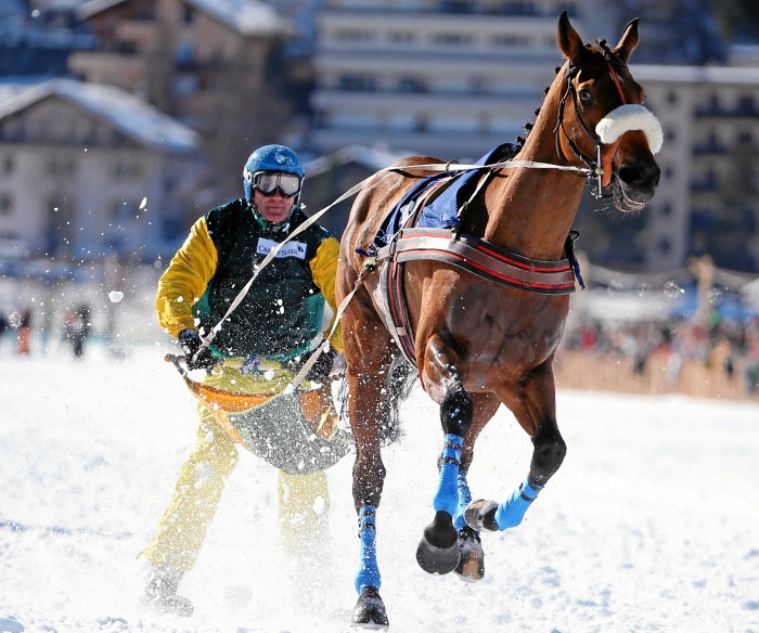 ST. MORITZ, 21FEB16 - Dreamspeed mit Franco Moro beim 'Grand Prix CREDIT SUISSE', dem Skikjoering am dritten Renntag des White Turf in St. Moritz am 21. Februar 2016.  Impression of the White Turf St. Moritz, the famous international horse races on the frozen lake of St. Moritz, Switzerland, February 21, 2016.   swiss-image.ch/Photo Andy Mettler