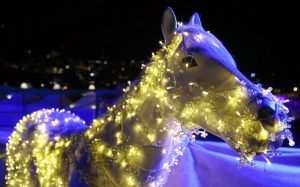 Horse in Lights - Night Turf St. Moritz