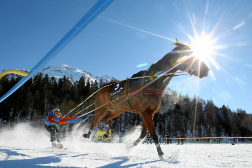 White Turf St. Moritz – Press release – 2nd racing day