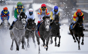ST. MORITZ, 15FEB15 - Schnelles Rennen: Das Feld des  'GP Prestige', einem Flachrennen ueber 1900 m, bewegt sich mit trommelnden Hufen in Richtung Ziel anlaesslich des 2. Renntages von White Turf in St. Moritz am 15. Februar 2015.  Impression of the White Turf St. Moritz, the famous international horse races take place on the frozen lake of St. Moritz, Switzerland, February 15, 2015.   swiss-image.ch/Photo Andy Mettler