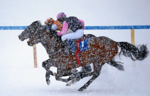 ST. MORITZ, 15FEB15 - Impression vom 2. Renntag von White Turf in St. Moritz am 15. Februar 2015.  Impression of the White Turf St. Moritz, the famous international horse races take place on the frozen lake of St. Moritz, Switzerland, February 15, 2015.  swiss-image.ch/Photo Andy Mettler