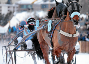 ST. MORITZ, 8FEB15 - Belgino mit Claudia Koller-Wehrly im 'GP Swiss International Air Lines', einem Trabrennen ueber 1700 m, anlaesslich des 1. Renntages von White Turf in St. Moritz am 8. Februar 2015.  Impression of the White Turf St. Moritz, the famous international horse races take place on the frozen lake of St. Moritz, Switzerland, February 8, 2015.  swiss-image.ch/Photo Andy Mettler