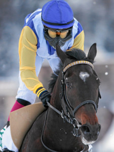 ST. MORITZ, 22FEB15 - Soundtrack mit Milan Zatloukal im Sattel gewinnt ueberlegen den 'GP der Rennbahn Berlin-Hoppegarten', einem Flachrennen ueber 1900 m, anlaesslich des 3. Renntages von White Turf in St. Moritz am 22. Februar 2015.  Impression of the White Turf St. Moritz, the famous international horse races take place on the frozen lake of St. Moritz, Switzerland, February 22, 2015.  swiss-image.ch/Photo Andy Mettler *** Local Caption ***