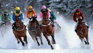 White Turf St. Moritz: 'GP Moyglare Stud'