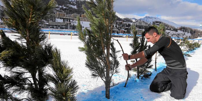 2016 White Turf St. Moritz – Preview 21 February