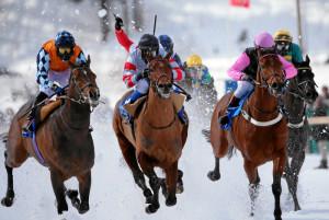 ST. MORITZ, 21FEB16 - Die Pferde Boomerang Bob (L), High Duty und Zarras (R) liefern sich ein starkes Rennen am 'GP Moyglare Stud (NL)', einem Flachrennen am dritten Renntag des White Turf in St. Moritz am 21. Februar 2016.  Impression of the White Turf St. Moritz, the famous international horse races on the frozen lake of St. Moritz, Switzerland, February 21, 2016.   swiss-image.ch/Photo Andy Mettler