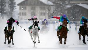 ST. MORITZ, 14FEB16 - Zielgerade beim 'H.H. Sheikh Zayed Bin Sultan Al Nahyan Listed Cup', einem Flachrennen am zweiten Renntag des White Turf in St. Moritz am 14. Februar 2016.  Impression of the White Turf St. Moritz, the famous international horse races on the frozen lake of St. Moritz, Switzerland, February 14, 2016.   swiss-image.ch/Photo Andy Mettler