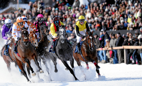 White Turf St. Moritz – The European Snow Meeting Race February 2018