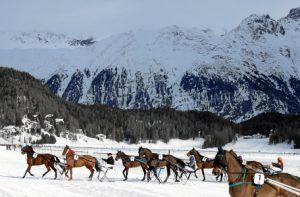 White Turf St. Moritz 2018.4